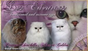 Les Edenrocs